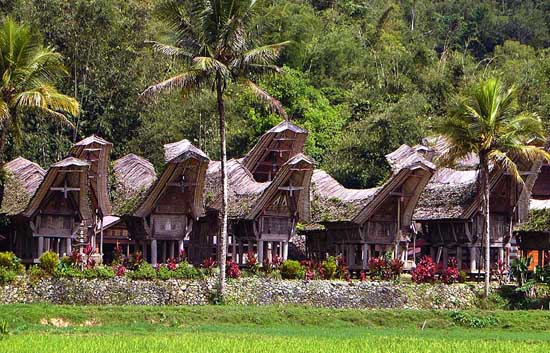 Tana-Toraja